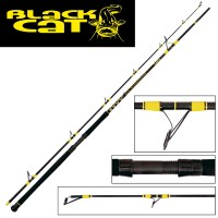 Black Cat Passion Pro DX Spin 2,70m 60-200g Wels Spinnrute