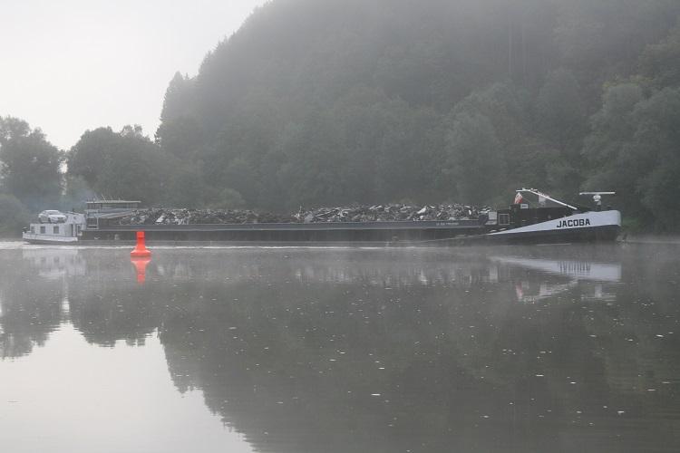 Wallerangeln am Neckar